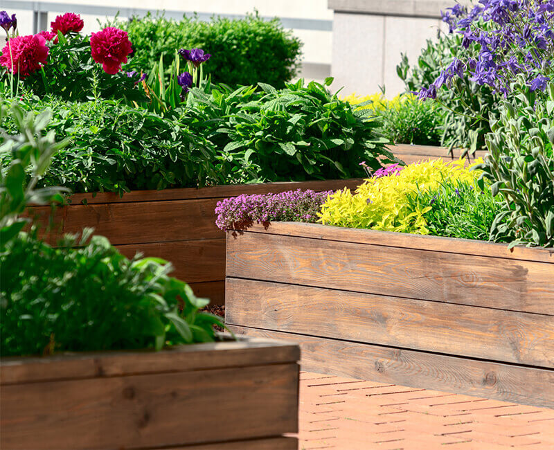 Landscape Gardening: Raised Beds